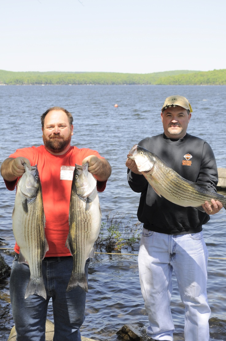 1000 images about lake wallenpaupack fishing on pinterest for Lake wallenpaupack fishing