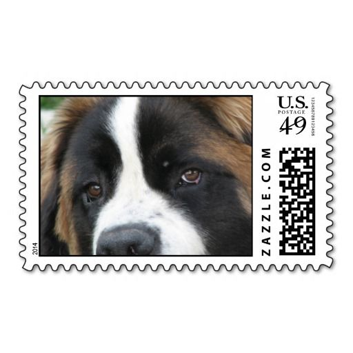 >>>Cheap Price Guarantee          St Bernard Puppies Postage Stamp           St Bernard Puppies Postage Stamp we are given they also recommend where is the best to buyThis Deals          St Bernard Puppies Postage Stamp Review from Associated Store with this Deal...Cleck Hot Deals >>> http://www.zazzle.com/st_bernard_puppies_postage_stamp-172069255105244782?rf=238627982471231924&zbar=1&tc=terrest