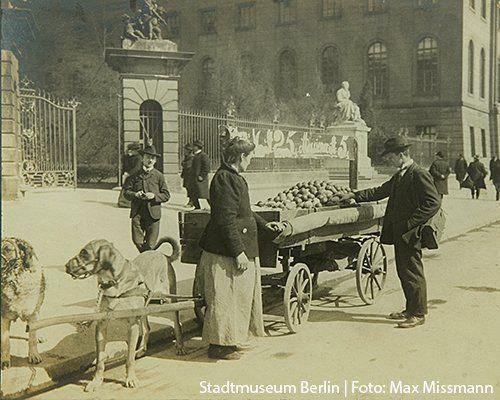 Berlin am 29.4.1829 Die Hundesteuer ist ab sofort moeglich.In Berlin sind Hunde als Zugtiere davon befreit...