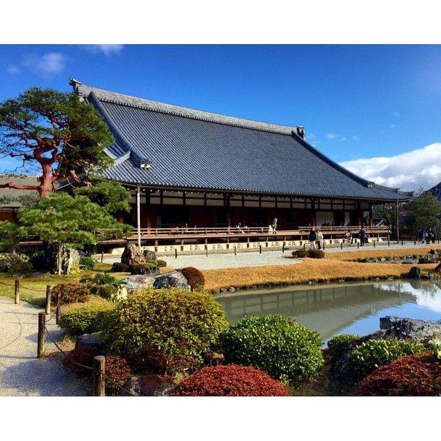 The beautiful Ninna Ji temple, a World Cultural Heritage site in Kyoto, Japan  #japan #kyoto #ninnaji #ninnajitemple #temple #travel #travelgram #traveltheworld #travelaroundtheworld #instatravel #instapassport #garden #japanesegarden #bonsai