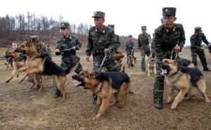 2/26/14, North Korean soldiers take part in training with military…