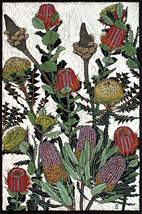 Australian Flowers: Banksias & Dryandra by Rachel Newling. Hand-coloured linocut on handmade Japanese paper, 75 x 50 cm
