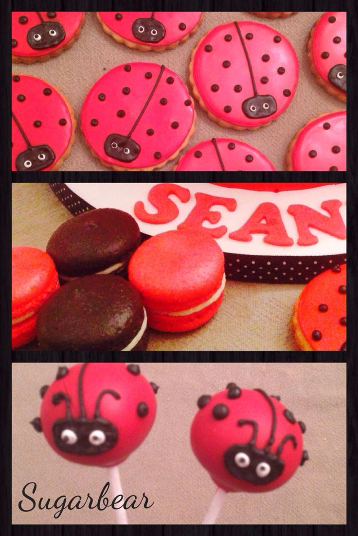 Little ladybug cake pops, biscuits and macarons
