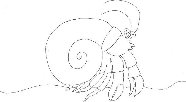 Image result for home for hermit crab coloring page