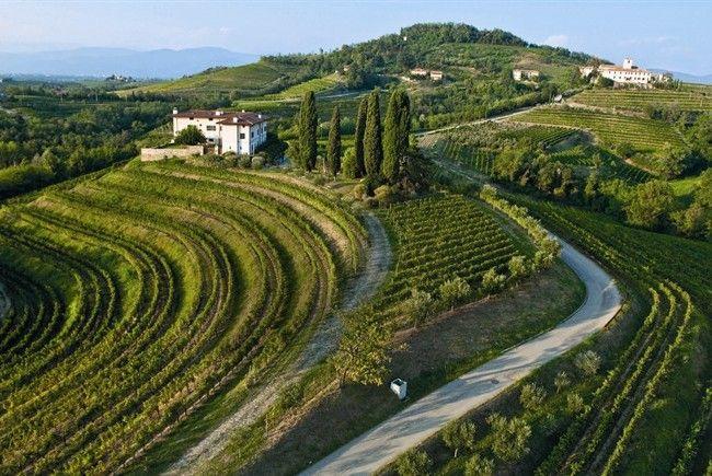 Collio, Friuli-Venezia Giulia, Italy