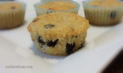 Cut the Wheat, Ditch the Sugar: Coconut Chocolate Chip Muffins: Grain Free, Low Carb, Sugar Free (with Vegan option)