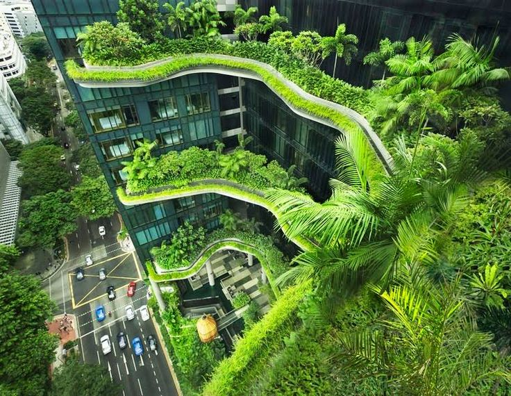 """Interview with WOHA: """"The Only Way to Preserve Nature is to Integrate it into Our Built Environment"""" 