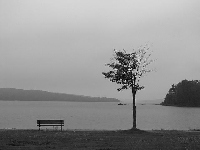 Elliot Lake by Steve Colwill