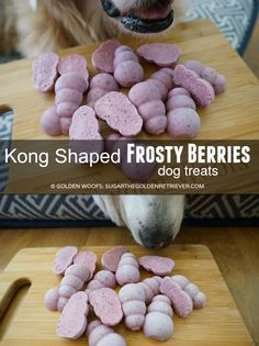 KONG Shaped Frosty Berries dog treats