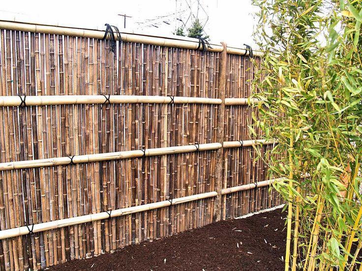 18 best bamboo images on Pinterest Bamboo fence, Backyard fences - bambus garten design
