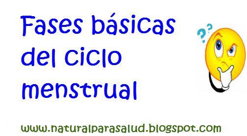Natural para Salud: Fases básicas del ciclo menstrual