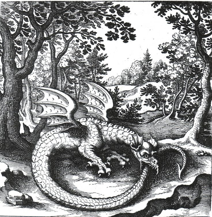 In alchemy, the Ouroboros is a sigil. Swiss psychologist Carl Jung saw the Ouroboros as an archetype and the basic mandala of alchemy. Jung also defined the relationship of the Ouroboros to alchemy. -   Engraving by Lucas Jennis, in alchemical tract titled De Lapide Philosophico.
