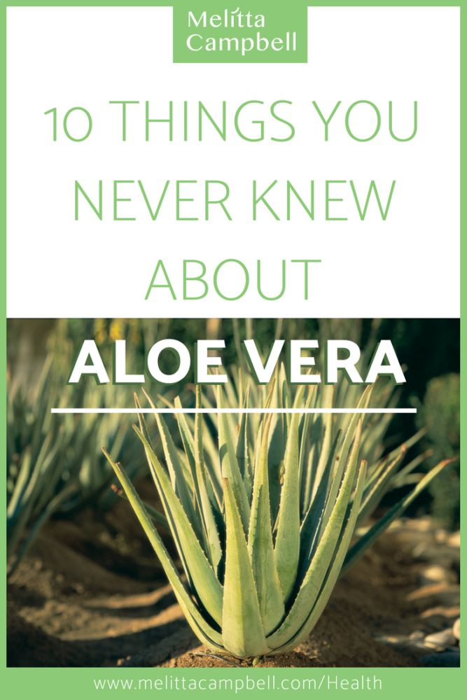 10 Things You Never Knew About Aloe Vera and how it can benefit your health and wellbeing
