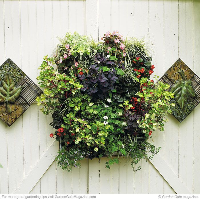make your walls more exciting garden design ideasgarden - Gardening Design Ideas
