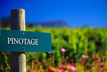 Pinotage road sign - drive me over there :)