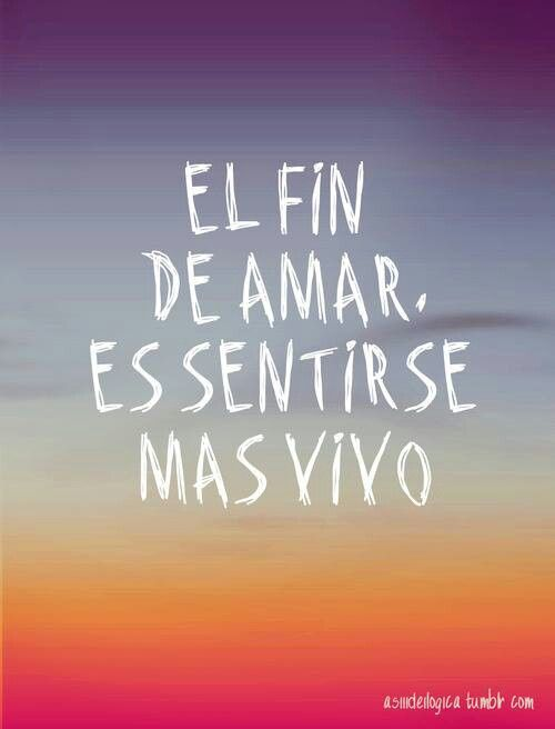 el amor #frases