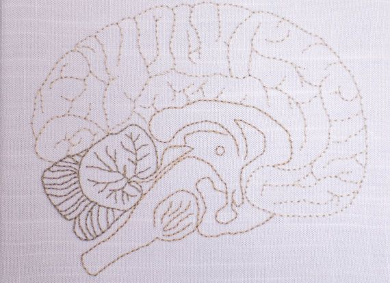 Hand Embroidered Brain-Sagittal plane by knittyMD on Etsy