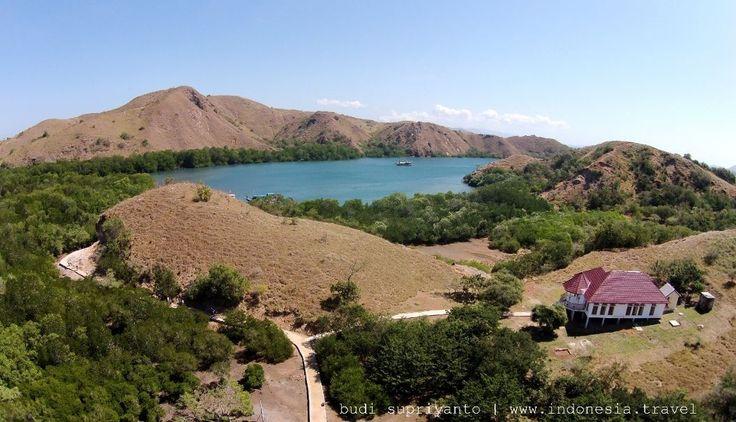 Komodo national park : Into the heart of the dragon http://www.indonesia.travel/en/destination/106/komodo-national-park