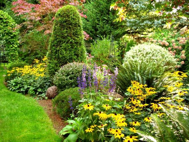 17 best images about landscaping with arborvitae on for Arborvitae garden designs