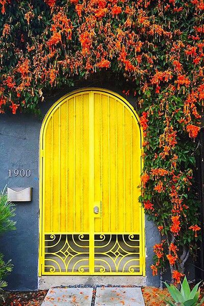 Best 25 Arched Doors Ideas On Pinterest Arched Front