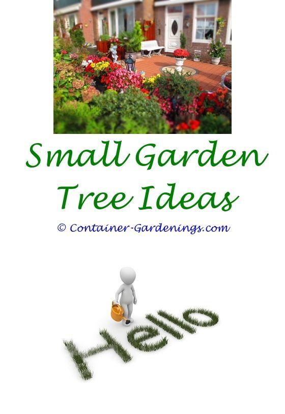 199 best Small Garden Ideas images on Pinterest | Gardening ...