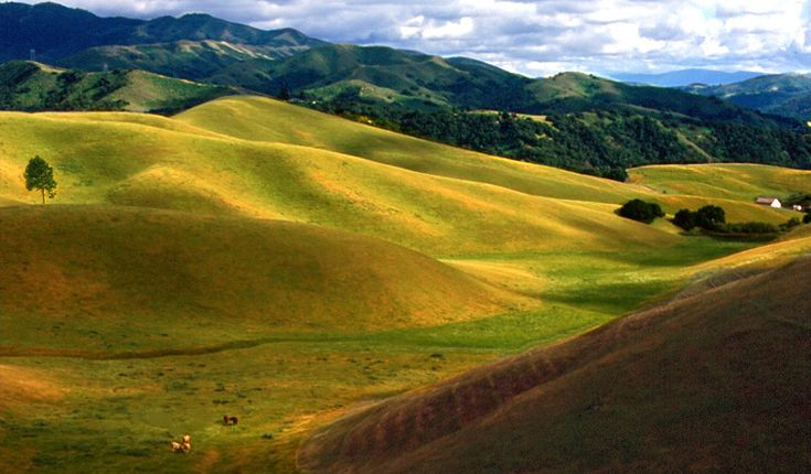 Salinas Valley, CA..  We live in Salinas, California.. We live in the city, but outside the city this is what we see.. Salinas is known as the 