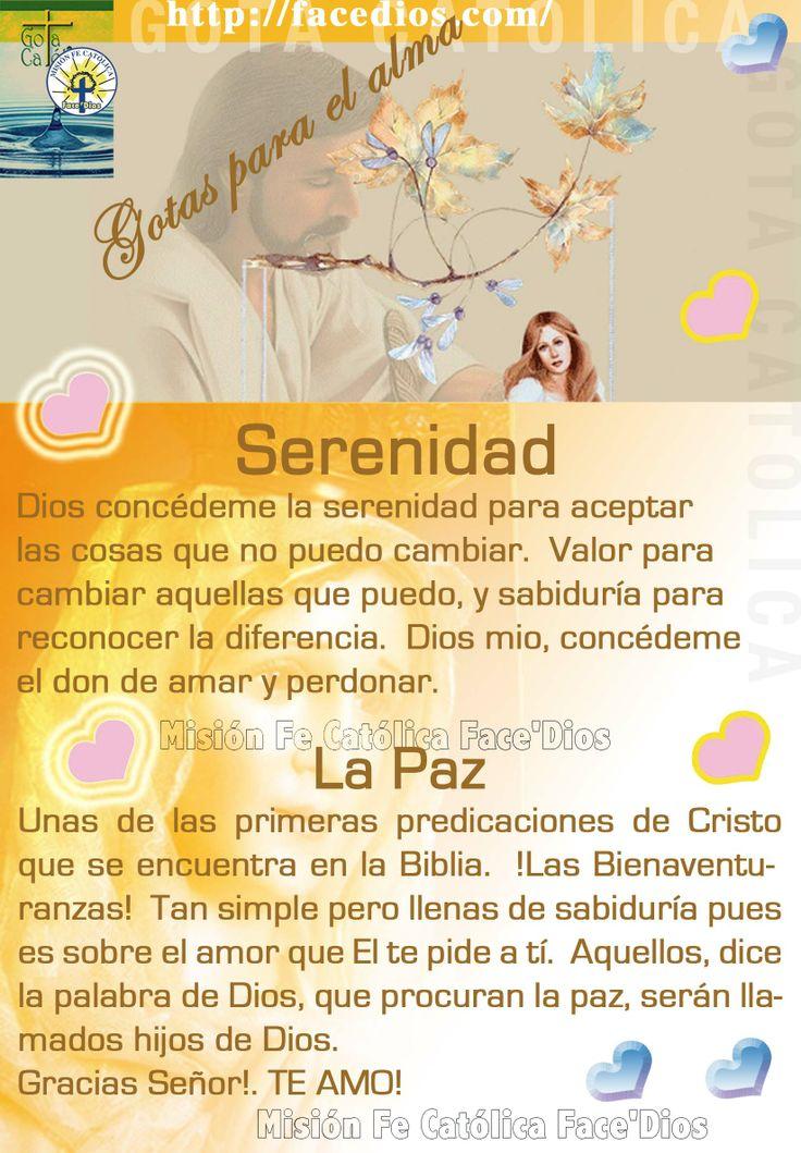 17 Best images about pura ternura on Pinterest   Te amo
