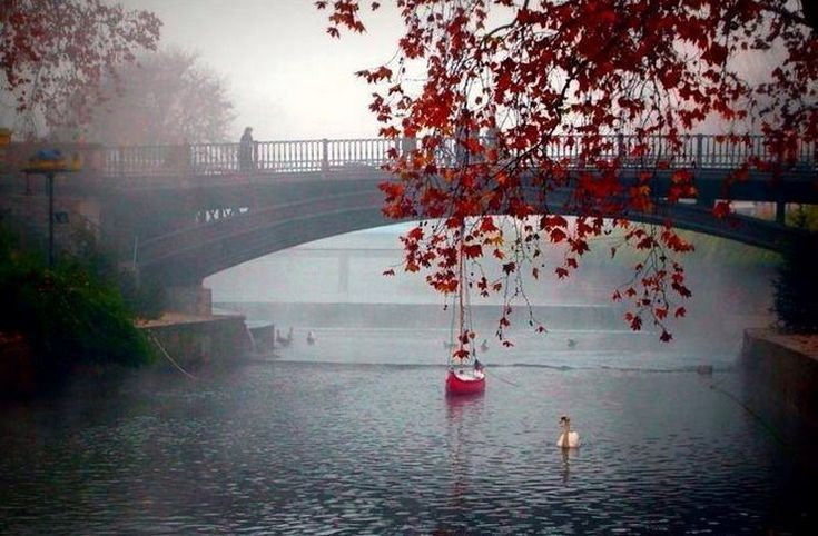 Η Ελληνική πόλη που χωρίζεται στα δυο από ποτάμι. Οι 10 γέφυρες δημιουργούν ένα τοπίο μαγικό!