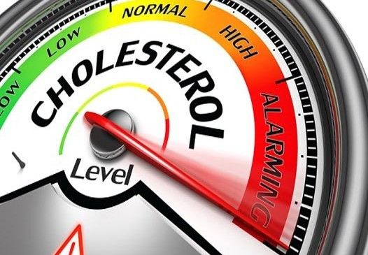 How Ozone Therapy can help fight Cholesterol.  Read full article here: http://www.salvagente.co.za/ozone-therapy/high-cholesterol-and-ozone-therapy/