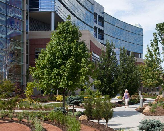 Hospital - garden walkway - entrance