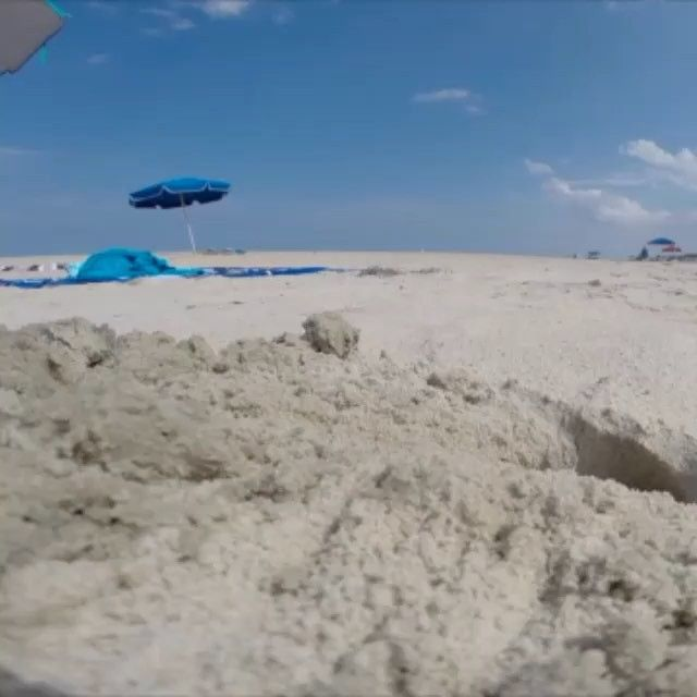 """Crab at work!! #TBT excavation in progress  by @helloitsclint from last summer.  Ghost crab burrows can be up to 4' deep. The crab's Latin name, Ocypoda, means """"swift-footed."""" #WaitForIt #BeachLife #FrontEndLoader #SandBox #SandPlay #ACrabsLife #CapeHatteras #NationalSeashore #OuterBanks #OBX #NationalParkService #NationalPark #NationalParks #NPS #CapeHatterasNationalSeashore #FindYourPark #GhostCrab #FleetOfFoot"""