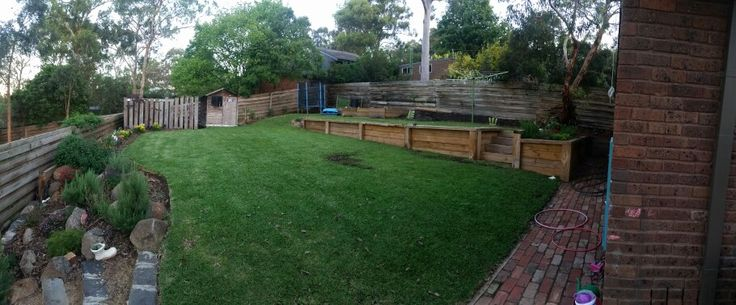 12 months on from the turf going down. Looks great and the rest of the garden is coming along too.