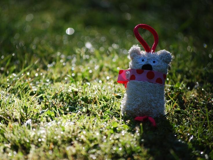 pink meadow softie