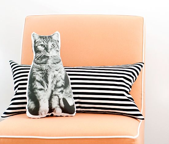 DIY pet pillows, via Yellow Brick Home Blog: Brick Home, Pet Pillows, Gifts Ideas, Pillows Pet, Pets, Photos Pillows, Pet Photos, Cat Pillows, Diy Pet