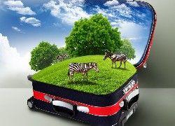 Zebry, Łąka, Drzewa, Walizka