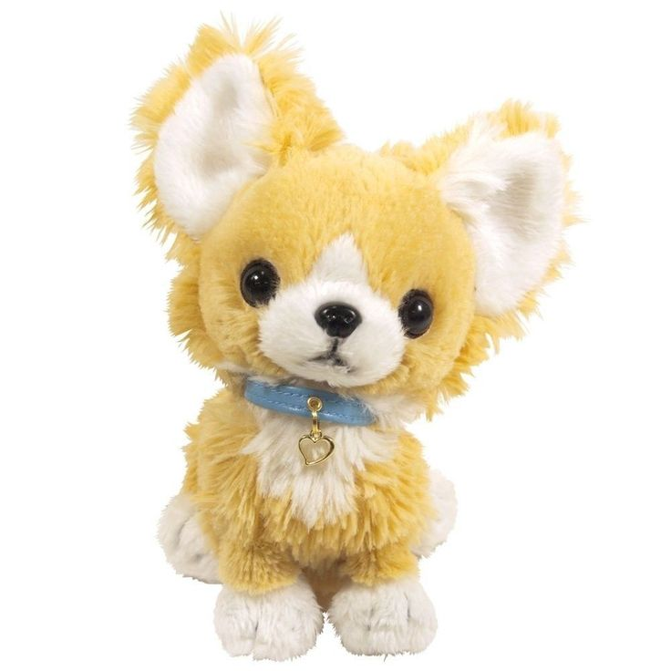 New Pups! Stuffed toys Chihuahua Beige from japan #sunlemon
