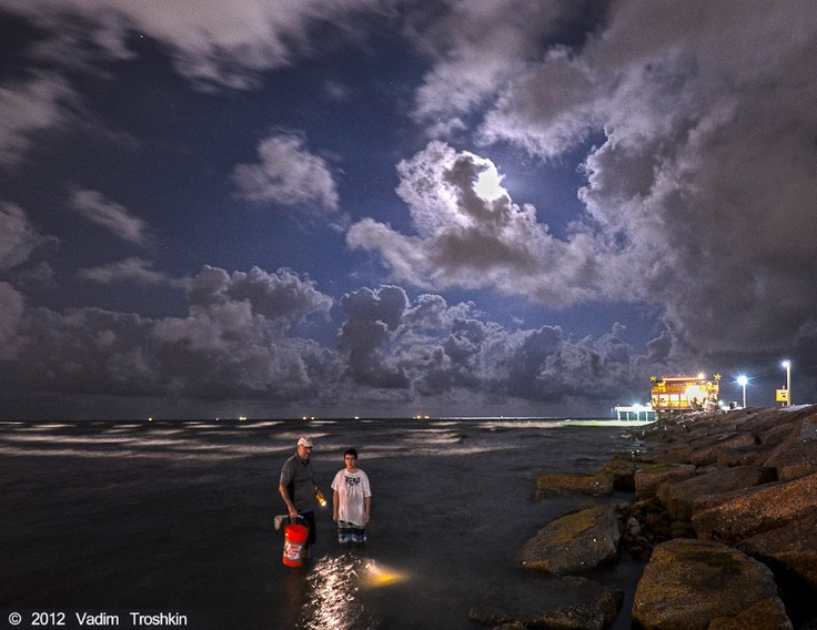 17 best images about sports recreation on pinterest for Surf fishing at night