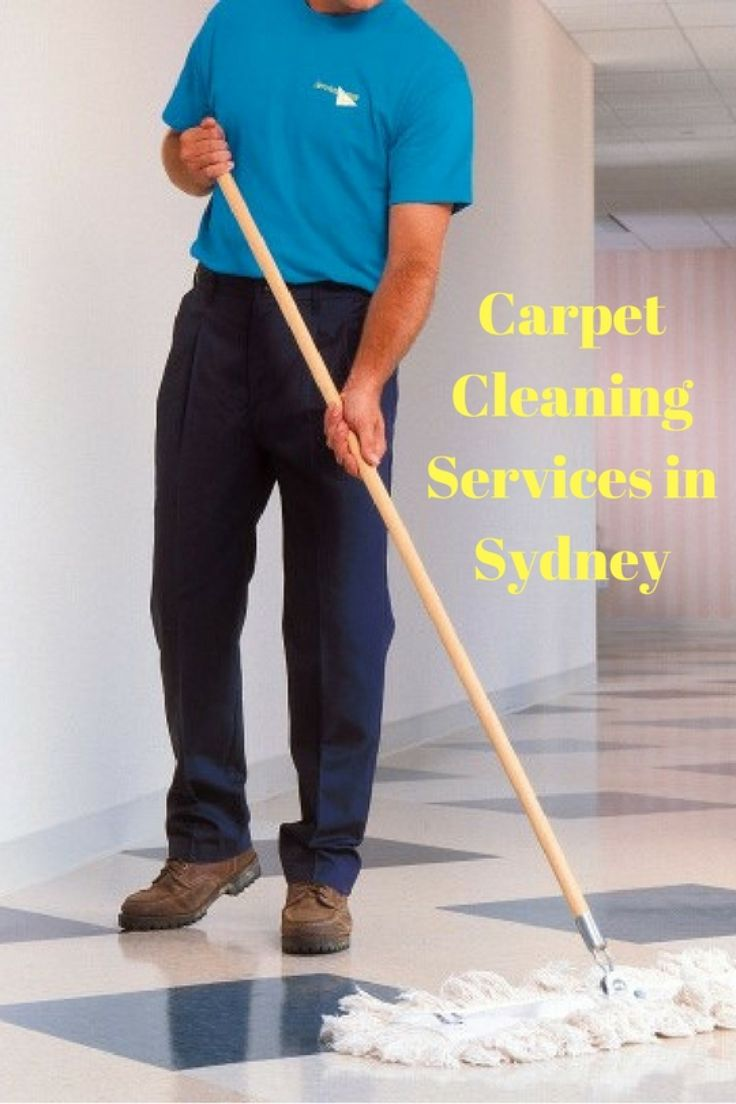 Carpet Cleaning Services in Sydney  Infographic