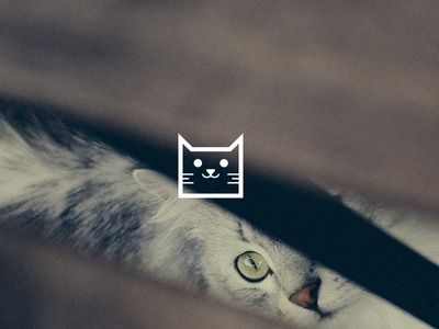 Logo / icons / Cat