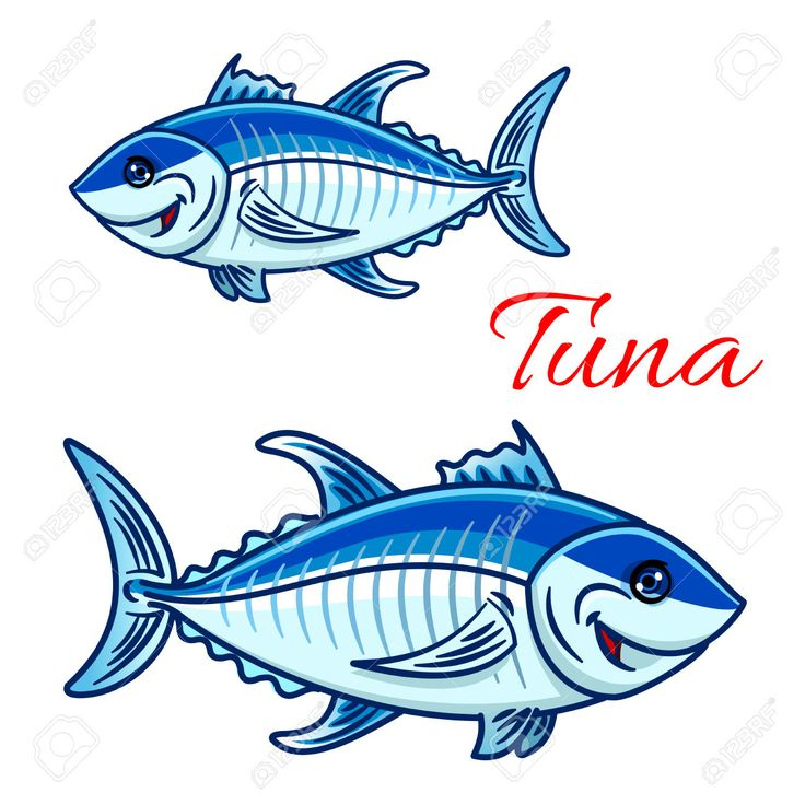 Cartoon Atlantic Bluefin Tuna Characters. For Aquarium Zoo Or ...