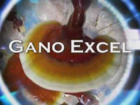 Reishi-Ganoderma Benefits Go to my online store GanoLilli and shop without autoshiping. http://us.ganoexcel.com/GanoLilli