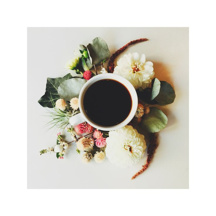 Bocca Specialty Coffee & Flowers. Such a perfect match!