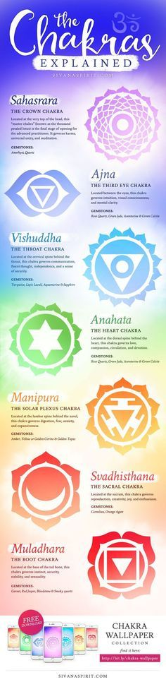 7 Chakras Explained Info Graphic - TelepathyHUB