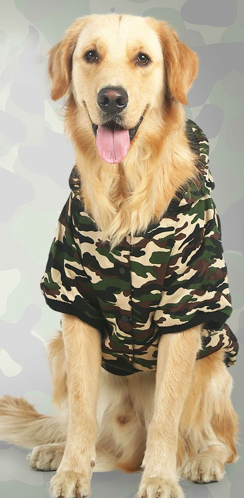 Let your pooch look as trendy and fashionable as you with this canvas camoflauge coat. With fleece lining, this jacket is perfect for the furry fellow who doesn't care for cooler temperatures or just when you want your dog to be as cool as you.