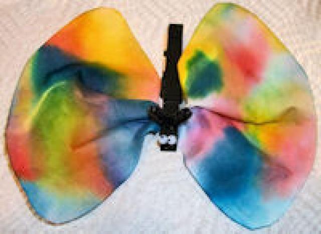 Coffee Filter Crafts: Coffee Filter Butterflies