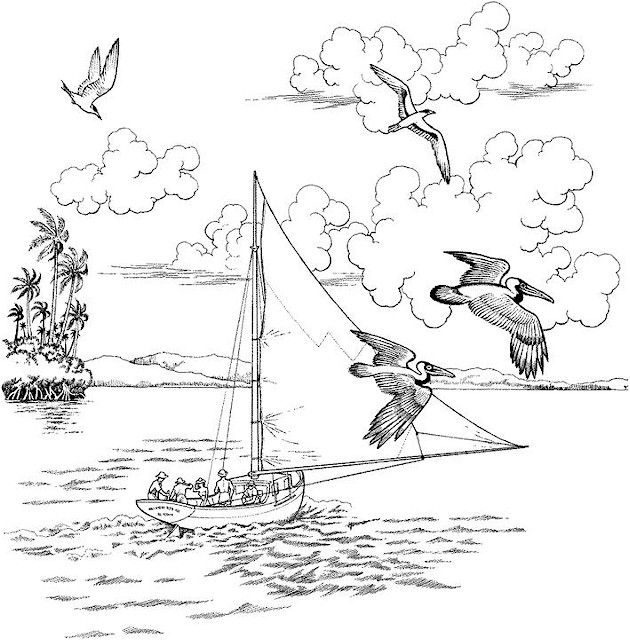 23 best nautical vintage images on Pinterest Drawings, Black and Boats - best of coloring pages adults birds