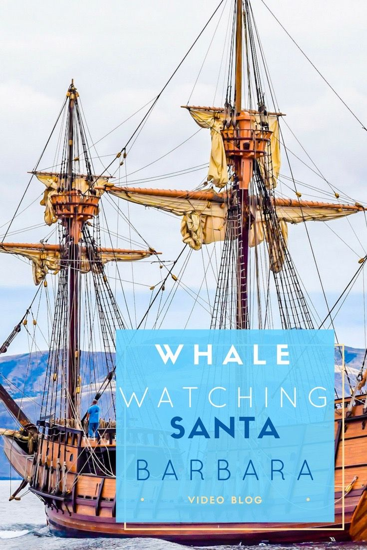 Santa Barbara is a stunning coastal destination just 2 hours north of Los Angeles. Join us as we check out the Whale Watching just off the coast of Santa Barbara. via @NiceRightNow