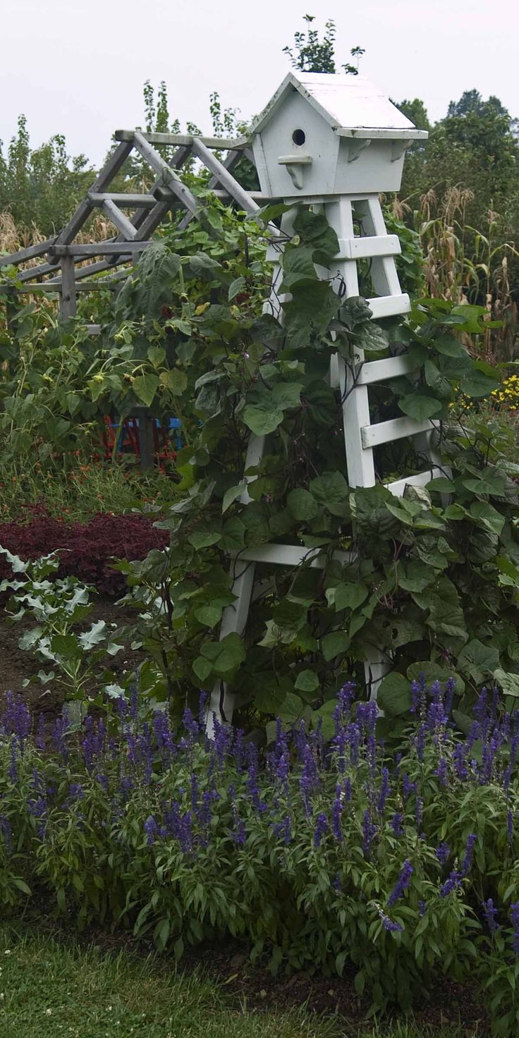 Birdhouse with trellis base- what a great way to decorate the garden and still have a useful trellis for vines etc. I can see it in my veggie garden with beans growing up the sides, think the grandkids would like that.