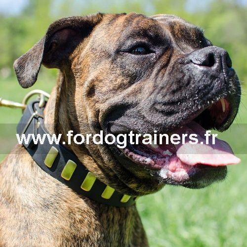 #Collier pour gros #chien #boxer «Mener une vie de luxe» -> 30,30 €