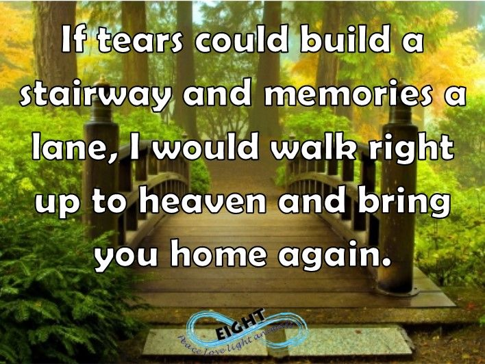 Any day. I would visit the rainbow bridge, visit heaven...